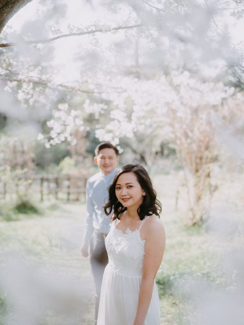 Tokyo pre-wedding photography with cherry blossoms by Ippei and Janine - English speaking portrait photographer in Tokyo