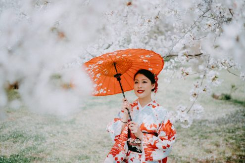 Tokyo kimono portrait photography with cherry blossoms by Ippei and Janine - English speaking vacation photographer in Tokyo
