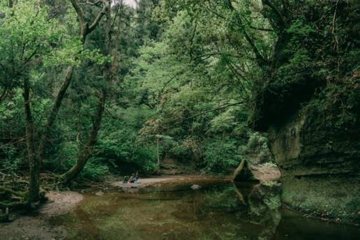 Hiking day trip from Tokyo, Takago Ravine, Chiba