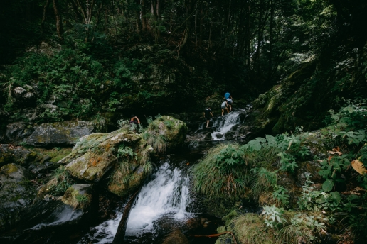 Outdoor hiking day trip to Tokyo's nature, Okutama