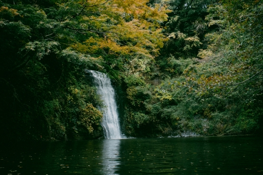 Day trip from Tokyo, Lake Kameyama-ko, Chiba