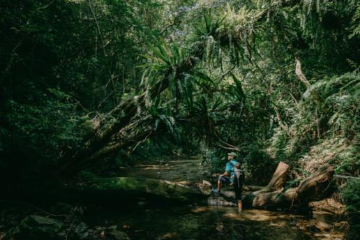 Jungle stream hiking, Amami Oshima Island, Japan