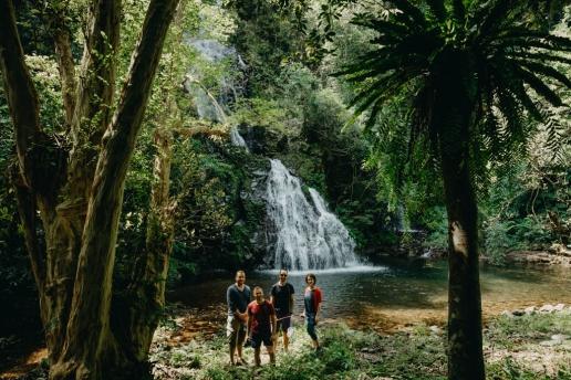 Waterfall in jungle of Amami Oshima Island, Japan