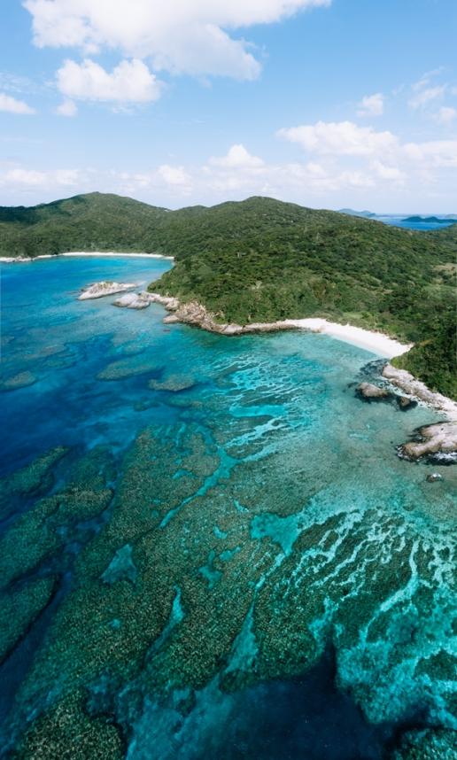 Coral reef of Tropical Japan, Aka Island
