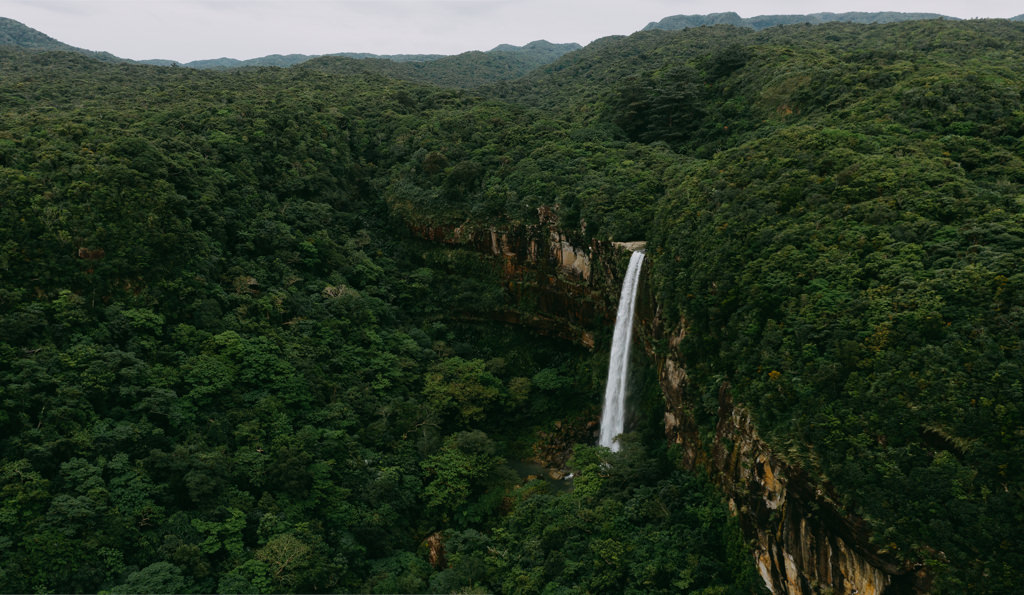 Pinaisara Falls, Iriomote Island, Tropical Japan