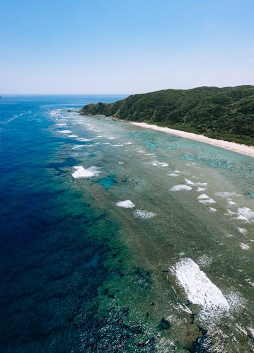 Coral reef of Amami Oshima Island, Kagoshima, Japan
