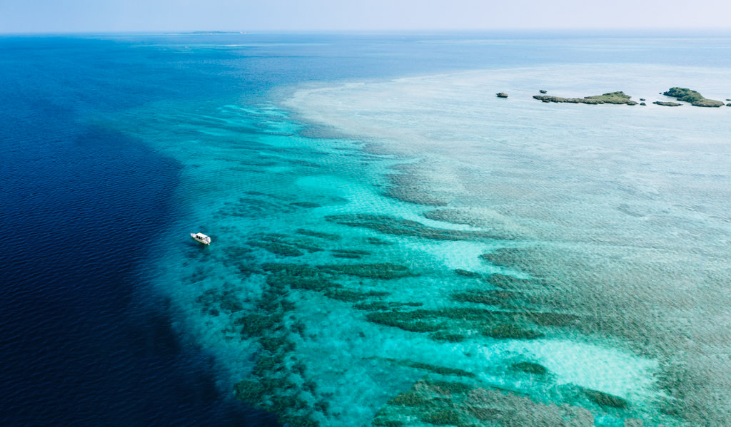 Tropical Japan's coral reef, Iriomote-jima, Yaeyama Islands, Okinawa