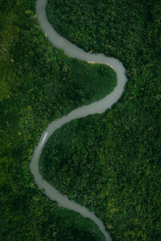 Winding mangrove river of Iriomote Island, Okinawa, Japan