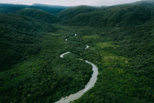 Aerial view of Japan's largest mangrove swamp, Iriomote Island, Okinawa