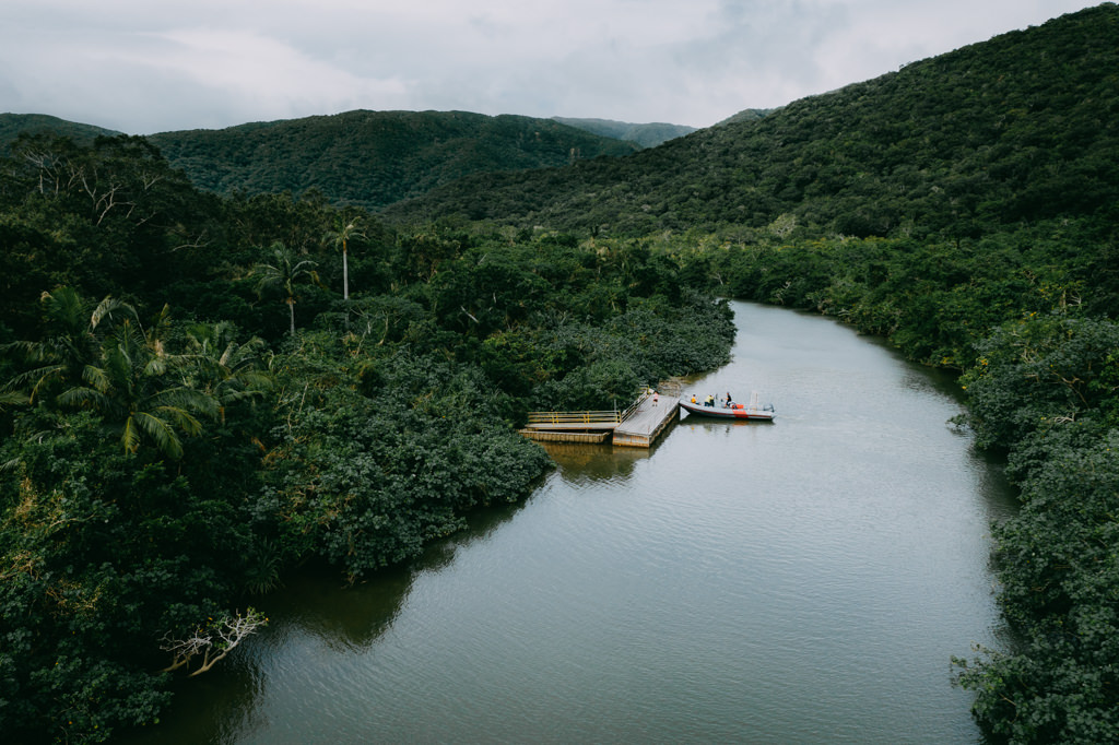 Japanese jungle river, Iriomote Island, Okinawa
