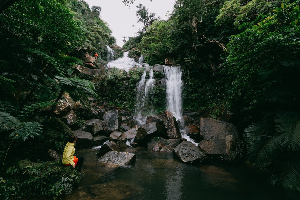Japanese jungle with waterfalls, Iriomote Island, Okinawa