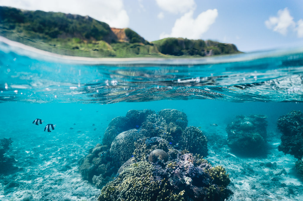 Coral lagoon snorkeling in clear tropical water of southern Japan, Miyakojima Island, Okinawa