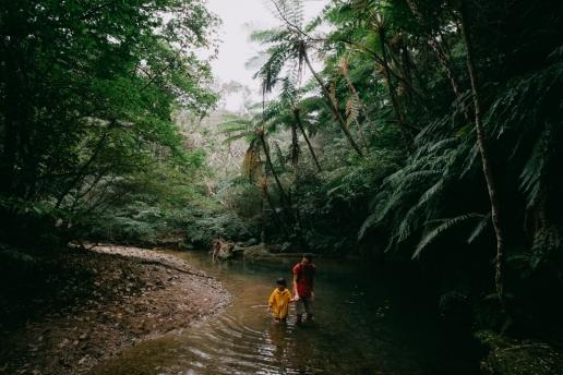 Hiking in Yanbaru Forest National Park, Okinawa, Japan