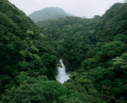 Yakushima waterfall, Kagoshima, Japan