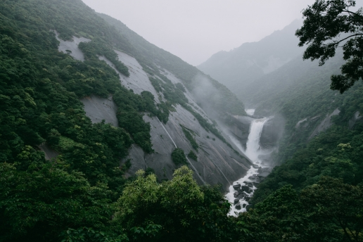 Rainforest waterfall, Yakushima, Kagoshima, Japan