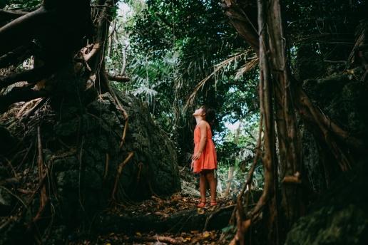 Ancient ruin in the jungle, Okinoerabujima, Kagoshima, Japan