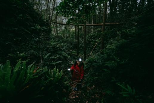 Jungle hike inside the crater of Aogashima Island, Tokyo, Japan