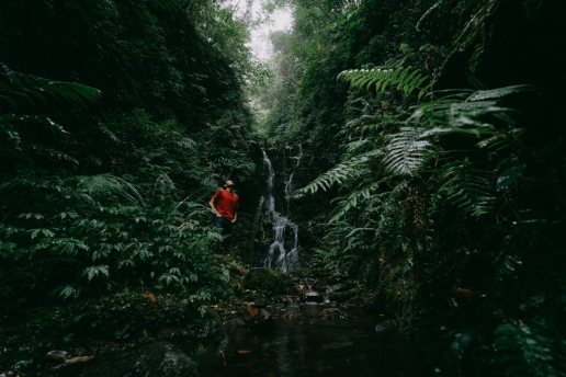 Nameless waterfall in jungle of Hachijo-jima, Tokyo, Japan