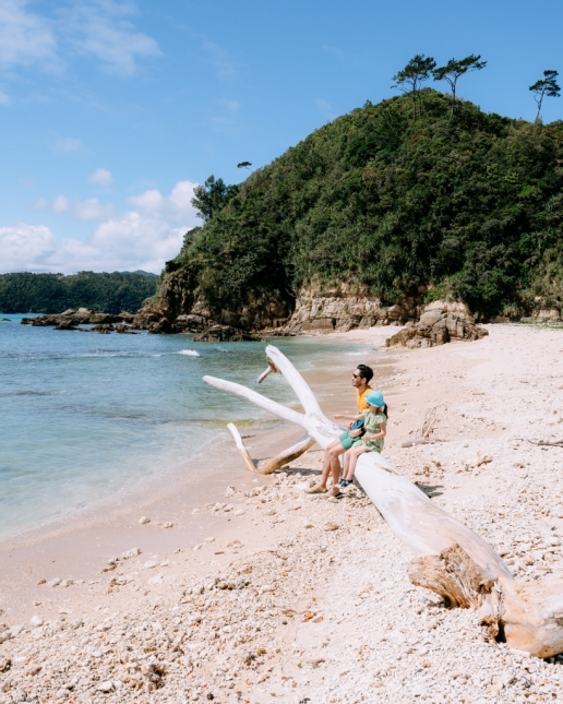 Secluded tropical beach, Okinawa Main Island, Japan