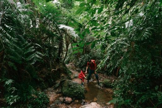 Okinawa winter jungle hiking, Japan