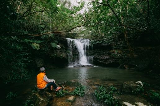 Jungle hiking in winter of Iriomote Island, Okinawa, Japan
