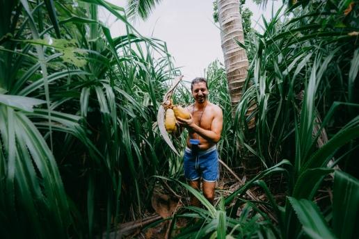 Japanese coconut harvest, Ishigaki Island, Okinawa