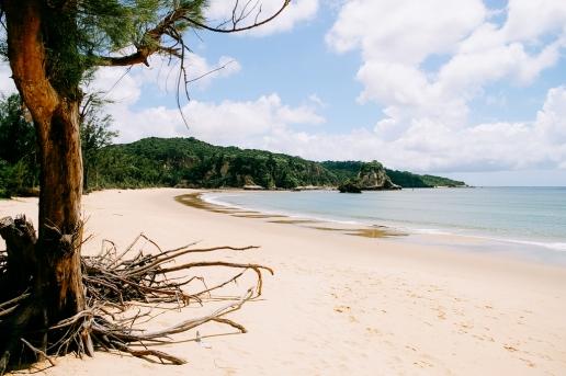 One of many wild beaches of Iriomote Island, Okinawa, Japan
