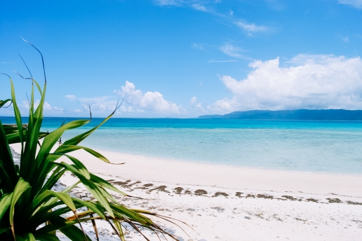 White sand tropical beach of southern Japan, Hatoma Island of the Yaeyama Islands