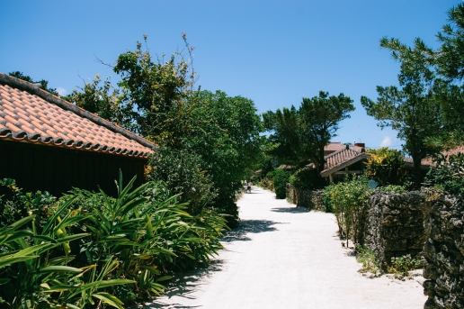 Ancient southern Japanese village on Taketomi Island of the Yaeyama Islands, Okinawa