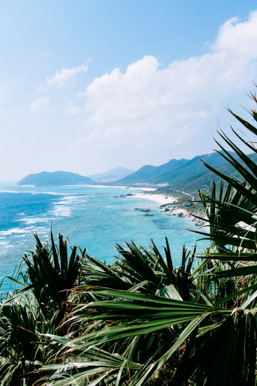 Fringing coral reef of southern Japan, Iheya Island, Okinawa