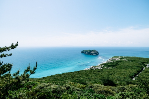 Lush evergreen forests and clear blue sea of Niijima Island, Tokyo