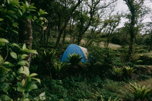 Aogashima campsite, Tokyo