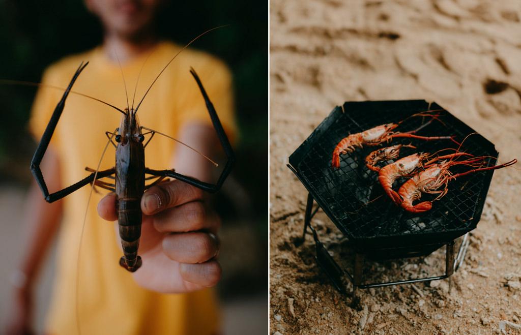 Freshwater prawns from jungle of Ishigaki Island, Okinawa, Japan