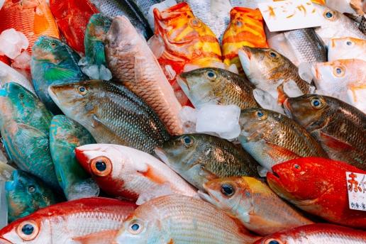 Tropical fish sold at Makishi Public Market, Okinawa