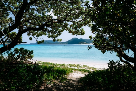 Scenic beach view from campsite, Zamami Island, Tropical Japan