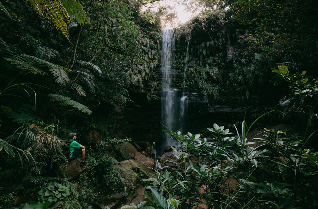 One of many waterfalls in the jungle of Iriomote Island, Okinawa, Japan