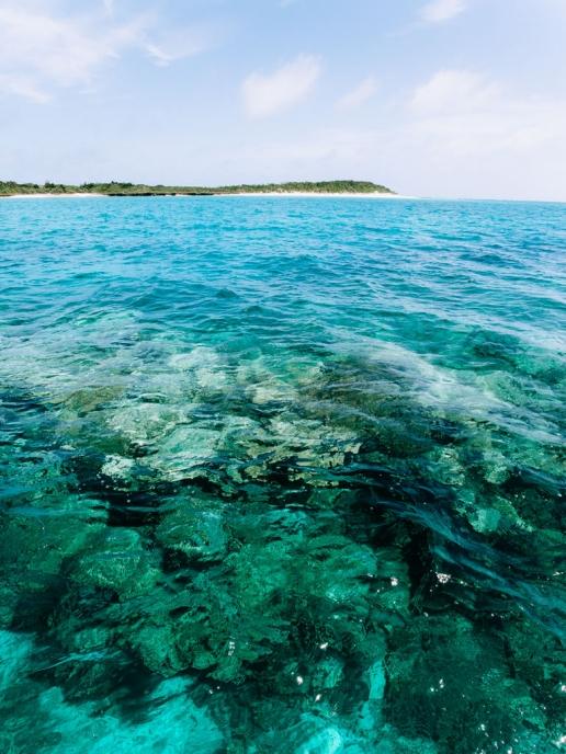 Pristine coral reef around Aragusuku Island of Yaeyama, Okinawa