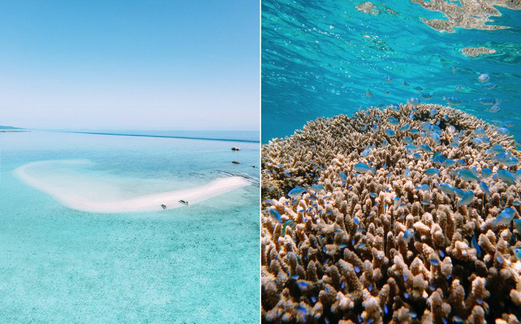 Sekisei Lagoon Coral Cay, Yaeyama Islands, Okinawa, Japan