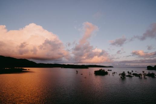 Iriomote mangrove swamp sunset, Okinawa, Japan