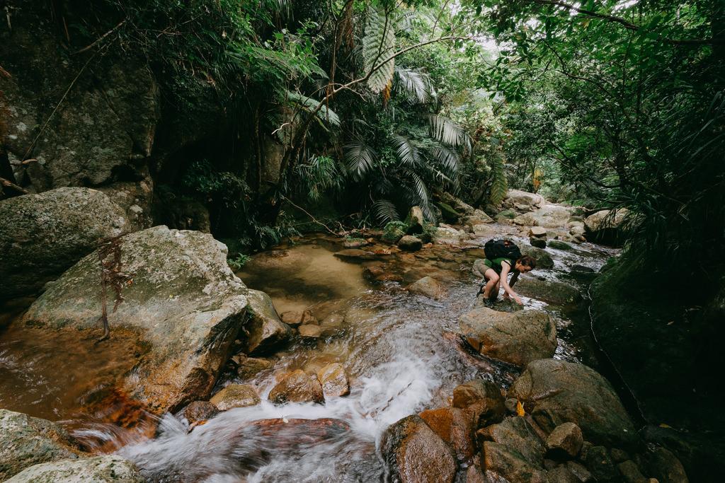 Jungle stream trekking on Ishigaki Island of the Yaeyama Islands, Okinawa, Japan