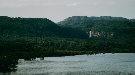 Pinaisara Falls and vast jungle of Iriomote Island, Okinawa, Japan
