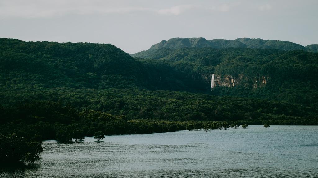 Pinaisaara Falls and vast jungle of Iriomote Island, Okinawa, Japan