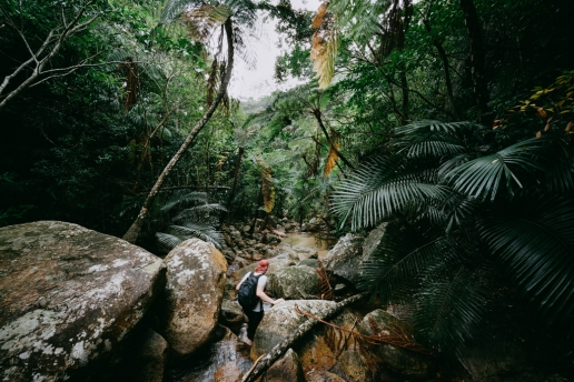 Stream hiking in jungle on Ishigaki Island of the Yaeyama Islands, Okinawa, Japan
